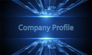 company profile 1 4 e1619400213822